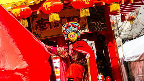 Megan Singleton: Pandas and performances in Chengdu