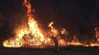Govt sending 21 firefighters to battle 'devastating' Queensland fires