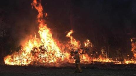 Nathan Jones: Government sending 21 firefighters to battle 'devastating' Queensland fires