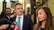 Leaked document shows Greens discussing scrapping spending limit policy