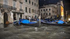 Stranded gondolas float adrift over the flooded banks, in Venice. Photo / AP