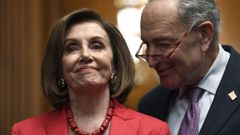 Nancy Pelosi and Chuck Schumer have both suggested the President should testify. (Photo / AP)