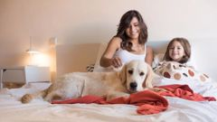 A much-loved family pet is more than welcome on the bed.