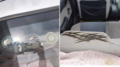 Upper Hutt woman Denise Whiteman is warning Kiwis to be cautious after she claims suction cups scorched the back of her husband's car seat. Photo / Denise Whiteman