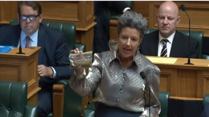 The baggie in question - National's deputy leader Paula Bennett holds up a bag of unknown green leaves in the House.