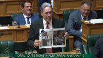 'The dope and the weed': Peters mocks Bennett over oregano stunt