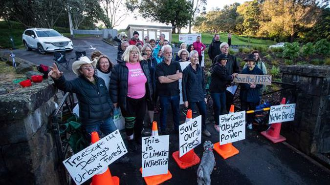 A protest against the removal of trees from Ōwairaka/Mt Albert has evolved to include debates around Māori concepts of mana whenua and pēpeha. Photo / File