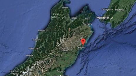 Family killed in crash near Kaikōura named