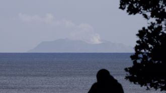 First responder to White Island weighs in on safety risk