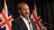 Andrew Little says probe into foreign interference has arrived too late