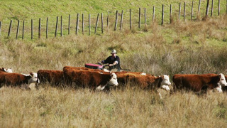 Farming initiative aims to reconnect urban and rural NZ