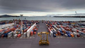 Perspective with Heather du Plessis-Allan: Why it's a good we're getting another Auckland Port report