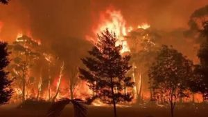 The fires are threatening homes on both sides of the continent. (Photo / News.com.au)