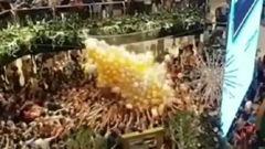 Christmas shoppers hurt in crowd crush at Westfield Parramatta. Video / @jononott / 7 News
