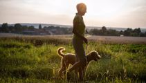 Dog owners warned over dangers of barley grass seeds