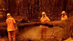 Fire crews put out spot fires in Sarsfield in Victora. So far there are 53 fires burning across Victoria. Photo / Getty