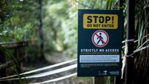Entitled hikers ignore ban on tracks closed due to kauri dieback