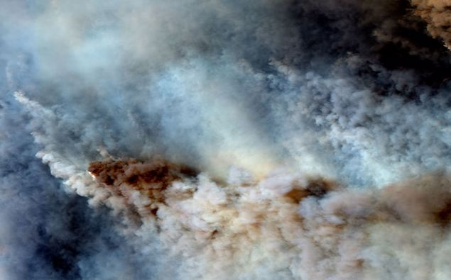 Will New Zealand see influx of people fleeing Australia's fires?