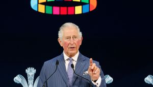 Prince Charles was addressing the World Economic Forum in Davos, Switzerland, for the first time in nearly 30 years. (Photo / AP)
