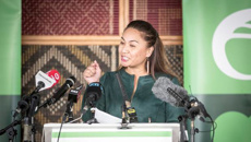 Green co-leader Marama Davidson puts NZ First Minister Shane Jones in her crosshairs