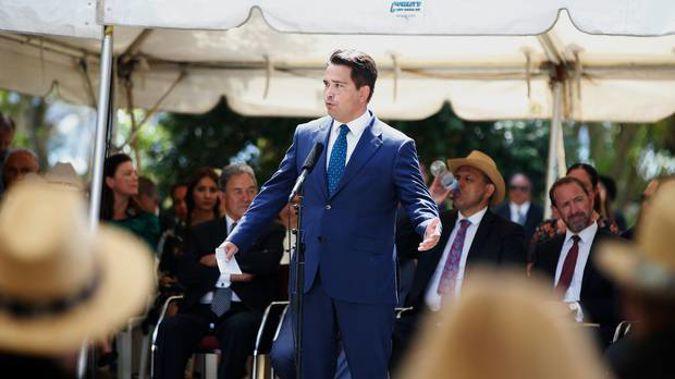 National Party Leader Simon Bridges at Waitangi. Photo / Michael Cunningham