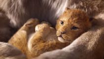 Disney apologises after charging school for showing 'The Lion King'
