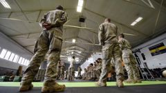 The bill enables police to draw on members of the New Zealand Defence Force to bolster their ranks. (Photo / File)