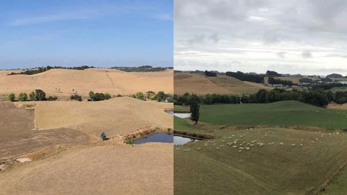 A photo taken in Feilding shows the same plot of land four weeks apart and the stark contrast after a month of no rain. Photo / Facebook