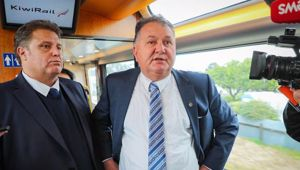 Shane Jones had plenty to say about James Cameron and local councils. (Photo / NZ Herald)