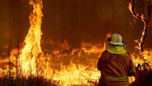 The bush fires have made parts of Australia uninsurable - the same could happen here. (Photo / File)