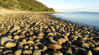 Ruud Kleinpaste: Little Barrier Island is a paradise