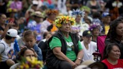 Pasifika Festival organisers hope they aren't going to get anyone sick - and they should worry. (Photo / File)