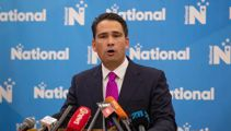 Simon Bridges: 'There is genuine cross-party cooperation on Covid-19 measures'