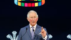 Prince Charles has not seen The Queen for two weeks. (Photo / AP)