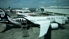 Irene King: Suggestions that Air New Zealand could enter Australian market dismissed