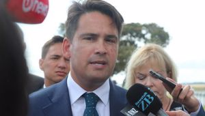 National Party leader Simon Bridges. (Photo / NZ Herald)