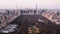 Dawn breaks over New York's Central Park on March 18 as the city struggles to contain the number of coronavirus cases. Photo / Getty