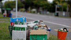 Many councils have put recycling services on hold. (Photo / File)