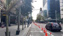 Social distancing cones rolled out across Auckland CBD