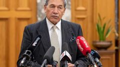 Deputy Prime Minister Winston Peters during his stand-up press conference in the Grand Hall, Parliament, Wellington today. *Photo / Mark Mitchell)