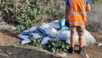 Courier driver sacked after dumping parcels at side of Auckland road