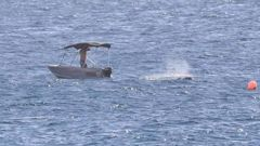 The man who raced to free the baby whale from shark nets off the Gold Coast. Photo / News Corp Australia