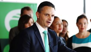 Green Party co-leader James Shaw. (Photo / File)
