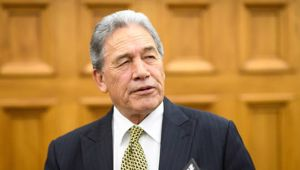Deputy Prime Minister Winston Peters. Photo / Mark Tantrum