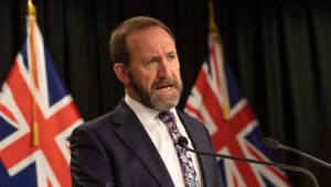 Justice Minister Andrew Little. (Photo / File)