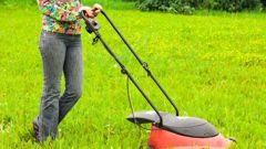 A Housing New Zealand property manager asked a tenant how she was getting on with mowing the lawn. A torrent of abuse and threats ensued, a Dunedin court has heard. (Photo / Supplied)