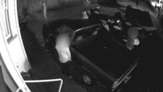 Super Rugby fans caught on camera using man's lawn as toilet near Eden Park