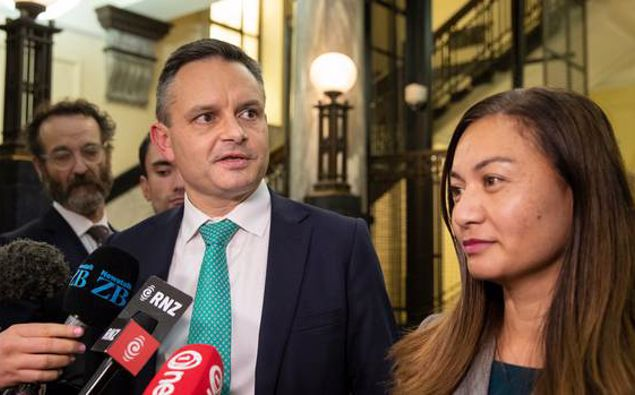 James Shaw and Marama Davidson. (Photo / NZ Herald)