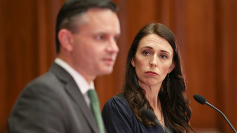 Heather du Plessis-Allan: Labour needs to rule out the Greens' nutty wealth tax