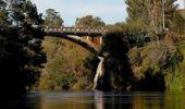 Waikato River. (Photo / File)